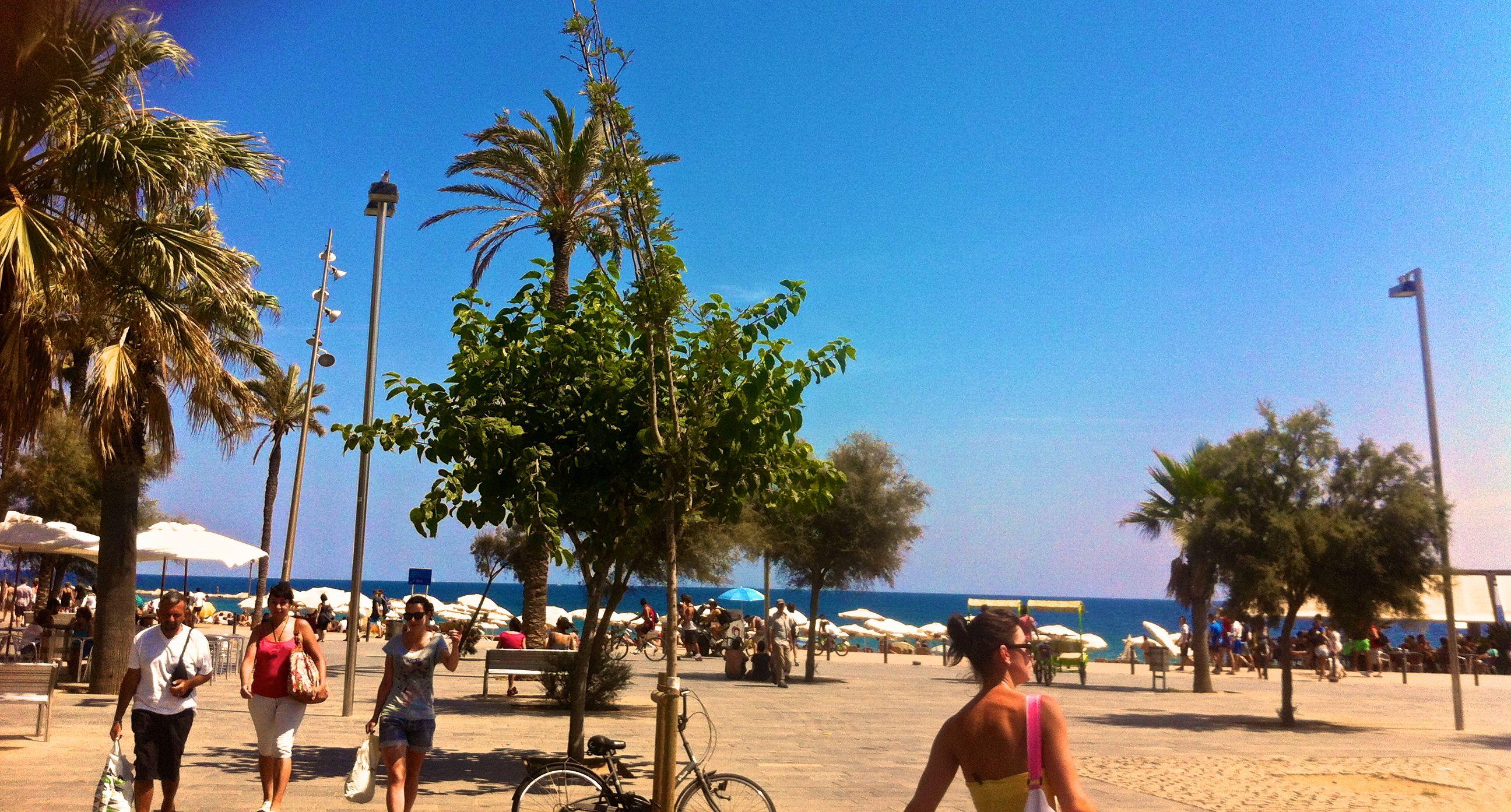 barcelonata-plaji